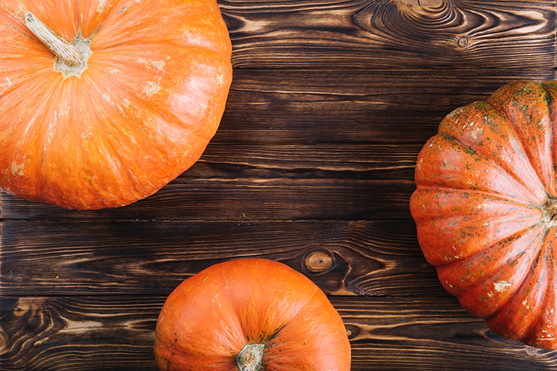 Welcome autumn and your pumpkins!